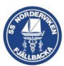 SS Norderviken